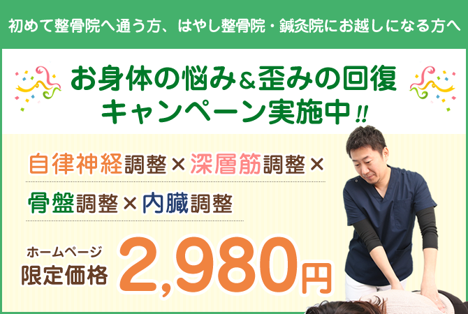 ホームページ限定価格:2980円